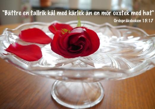 Hålla Bröllopstal? Lätt med Talakutens citatbank
